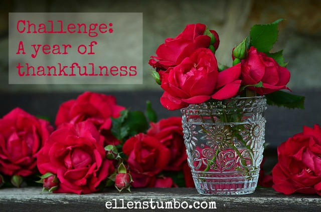 Challenge: A Year of Thankfulness