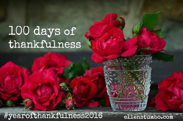 100 Days of Thankfulness