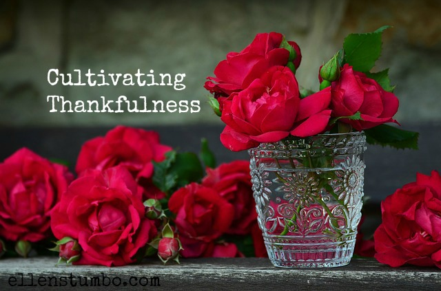 Cultivating Thankfulness [Podcast]